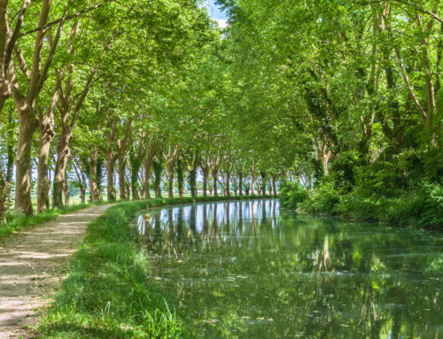 How to cycle on the Canal de Garonne in France