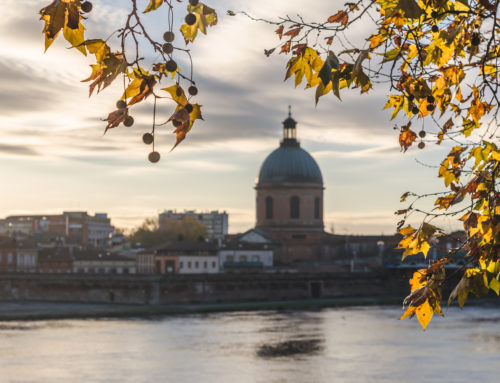 Autumn Walk in Toulouse